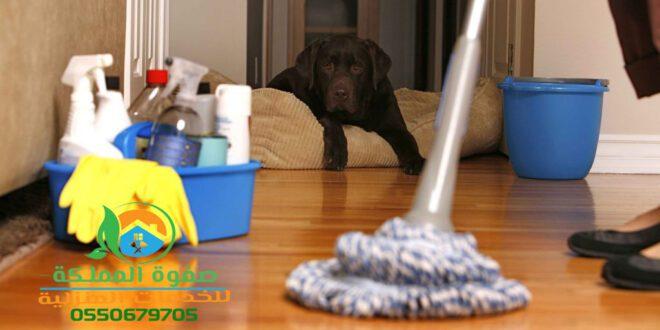 شركة تنظيف منازل بالرياض مع التطهير